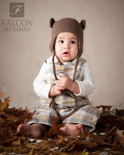 Falcon Photography 6 months