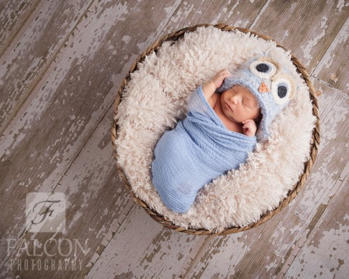 Falcon Photography Newborn Image