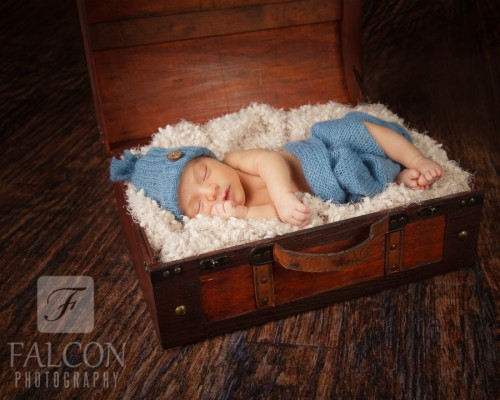 Falcon Photography Newborn Image
